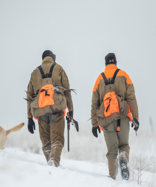 Safety Tips for Quail Hunters